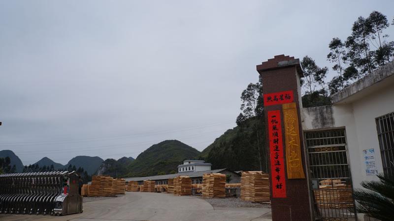广西建筑乐虎国际官方网app